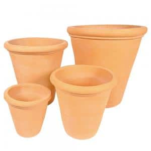 Terracotta-Citrus-Pot-LT4158-CottaSEAL